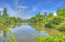 Sheffield Park Garden Lake 4