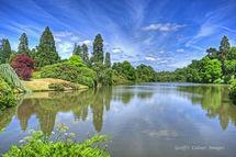 Sheffield Park Garden Lake 5