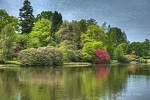 Sheffield Park Garden Lake 6