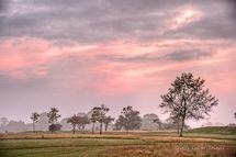 Suffolk Countryside - Automn