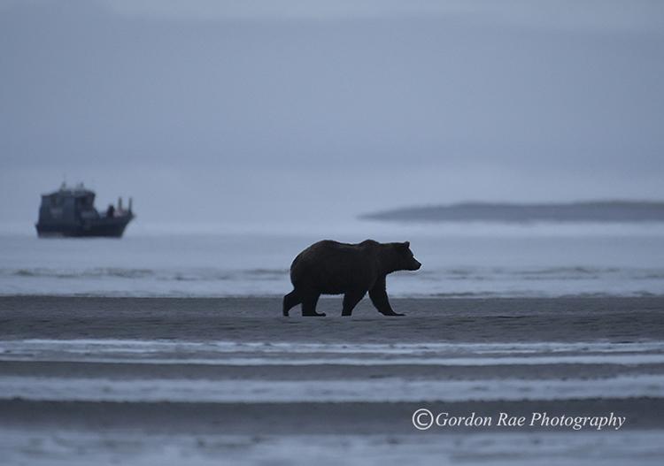 Cold Mornings in Alaska