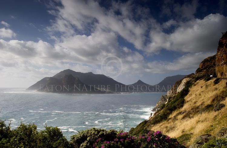 Chapmans Peak Drive, Cape Town
