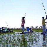 Botswana, Okavango Delta 1