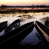 Botswana, Okavango Delta 2
