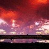 Botswana, Dusk at the water hole