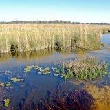 Botswana, Okavango Delta 3