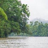 Ecuador, Amazonia