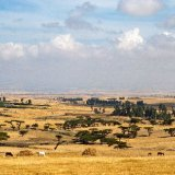 Ethiopia, Southern Uplands