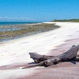 Tanzania, Island shore
