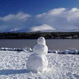 The Happy Snowman