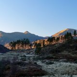 Frost in the Glen