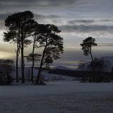 Loch Dubh Island