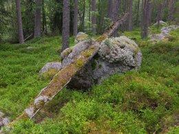 Schweden-Hamra NP
