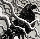 Hokkaido Crow