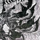 Razorbills and Guillemots