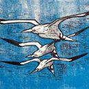 Gannet trio