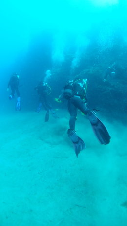 divers from behind