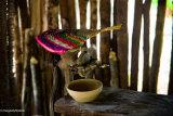 Mayan Living