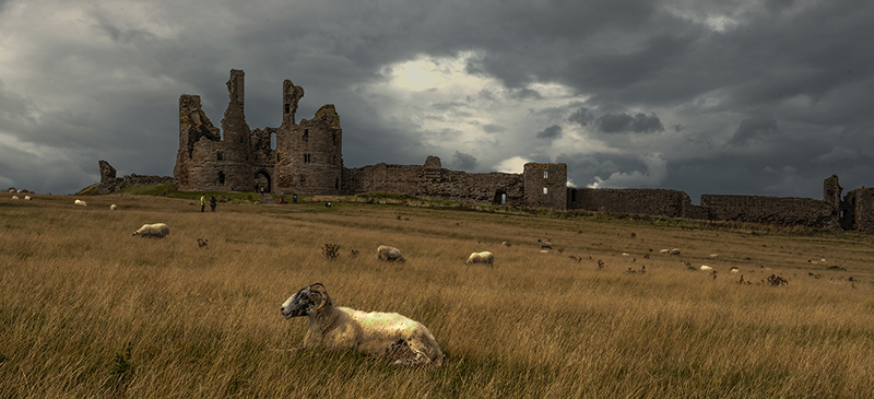 STORM BREWING OVER DUNSTANBURGH CASTLE