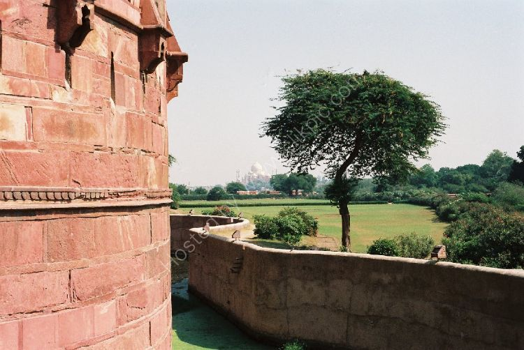 Castle - The Red Fort (with the Taj Mahal in the background)