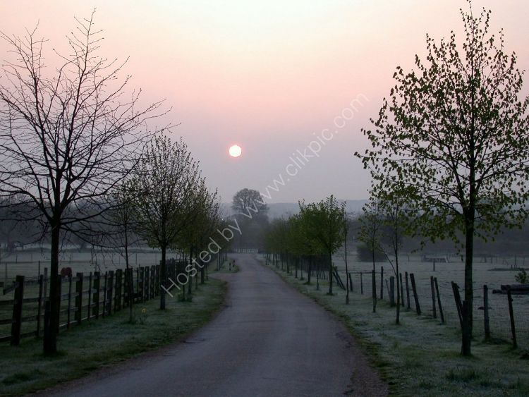 ENGLAND - Misty Morning Sunrise in Surrey