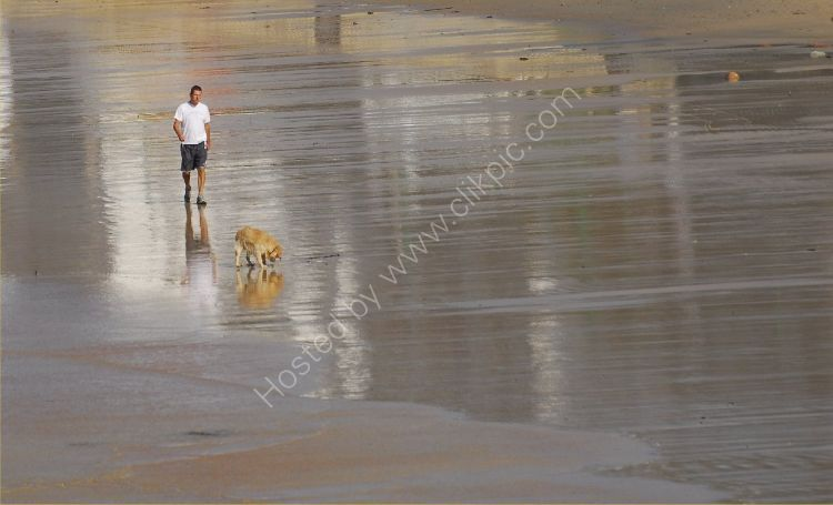 JERSEY - A man and his dog on the beach