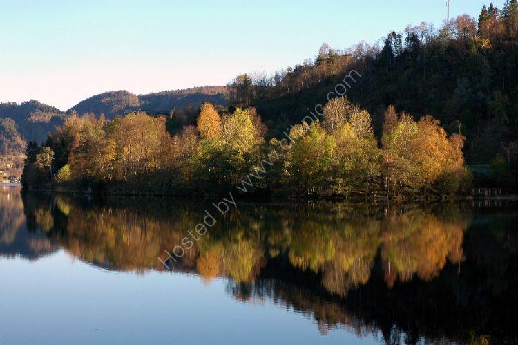 NORWAY - Norwegian Wood by a Fjord near Bergen