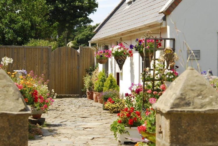 SARK - Pretty Cottage