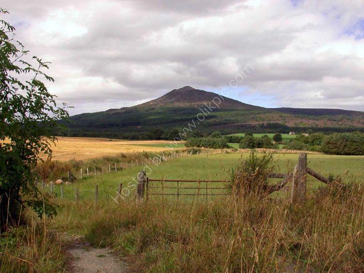 SCOTLAND - Bennachie