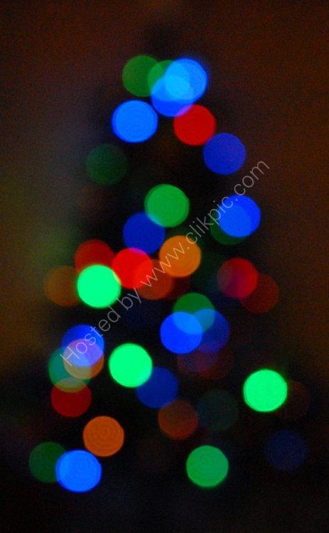 SCOTLAND - Christmas Tree Lights (an Abstract)