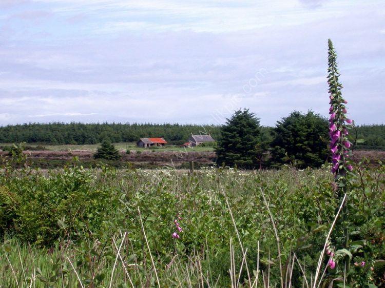 SCOTLAND - Hardslacks Croft, near Hatton, Aberdeenshire