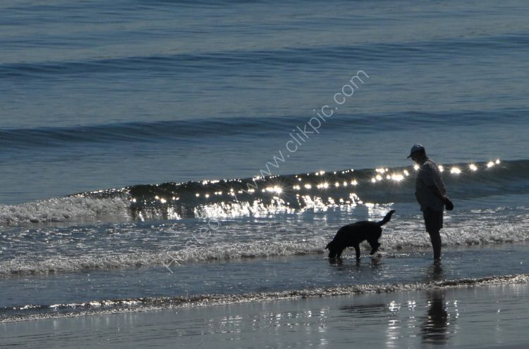 SCOTLAND - Man and his dog on the beach at Aberdeen