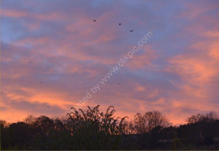 SCOTLAND - Red Sky at Night