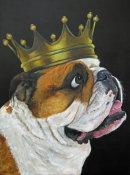 Mo. Bulldog