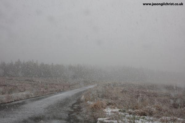 Snow blizzard by Craggie