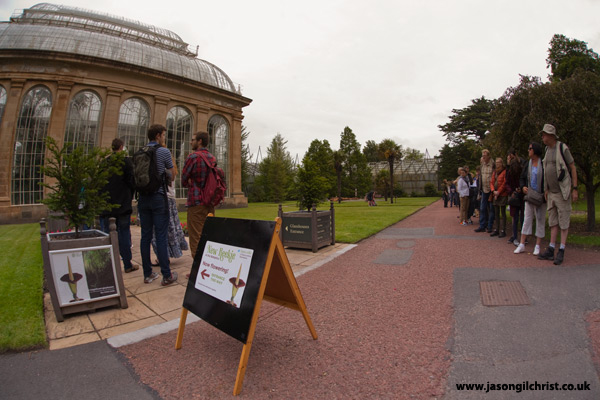 Queue for New Reekie outside the Tropical Glasshouses
