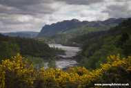 Of Gorse and Glen