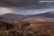Hills and trees of Perthshire