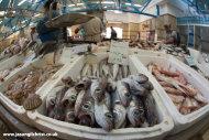 The Ribarnica fish market: Zagreb