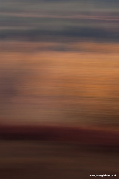 Morvern Woodland Abstract