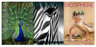 Biosphere Magazine