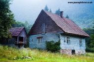 Blue cottage, Risjnak