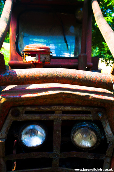 Sad: Red dead tractor, Risnjak