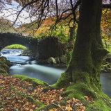 Autumn at Robber's Bridge