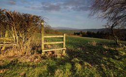 Stile To The Hills