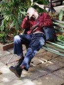 Cuban asleep in Parque Central, Havana
