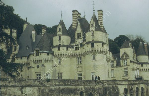 Chateau, Loire Valley