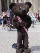 Bear Costume at Gay Festival, Parisa Platz, Berlin