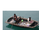 Oyster Fishing Boat in Halong Bay