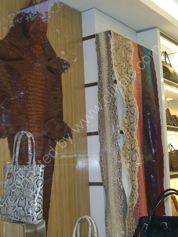 Crocodile Skins, Ho Chi Minh City